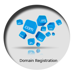 Domain Registration in Patna,Bihar,Noida,Delhi NCR